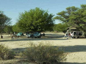 Kgalagadi Transfrontier Park - Nossob | Magic of the Kalahari Tours | Experience the African Wild